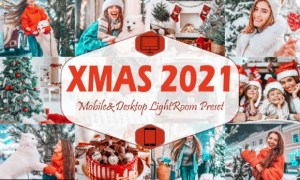 10 Xmas 2021 Mobile Lightroom Presets 5916710