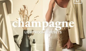 4 Lightroom Presets CHAMPAGNE 5321473