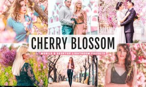 Cherry Blossom Mobile & Desktop Lightroom Presets