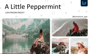 Peppermint - Lightroom Presets 5227517