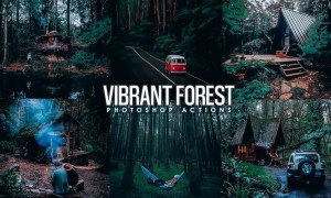 Vibrant Forest Effects Photoshop Actions 75Y3JF3