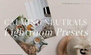 Calming Neutrals Lightroom Presets 4935953