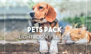 Pet Photography Lightroom Presets