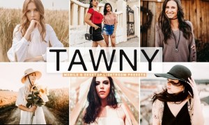 Tawny Mobile & Desktop Lightroom Presets