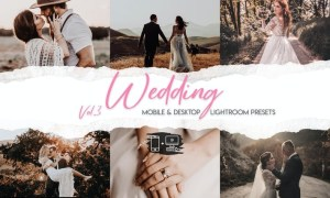 Wedding Lightroom Presets Vol. 3