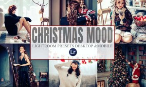 15 Christmas Lightroom Presets 5581592