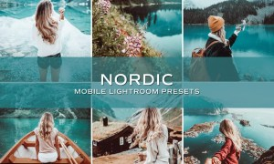 5 Nordic Lightroom Presets 5698933