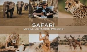5 Safari Lightroom Presets 5698736