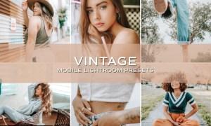 5 Vintage Lightroom Presets 5698762