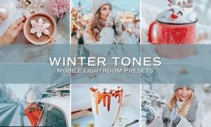 5 Winter Tones Lightroom Presets 5698860