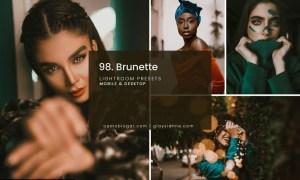 98. Brunette Presets 4998602