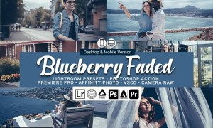 Blueberry faded Presets 5693268