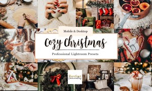 Cozy Christmas Lightroom Presets 5495665