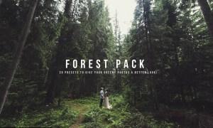K1 Forest Pack Presets