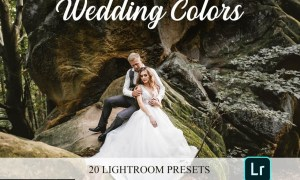 Lightroom Presets - Wedding Colors 4821653