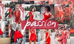 Passion Lightroom Presets 6585547
