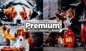 Premium Lightroom Presets Mobile and Desktop