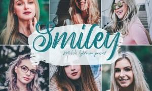 Smiley Lightroom Presets 5685253