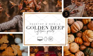 GOLDEN DEEP - Lightroom Presets 5200047