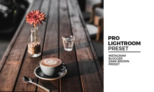 Instagram Blogger Dark Brown Preset