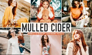 Mulled Cider Mobile & Desktop Lightroom Presets