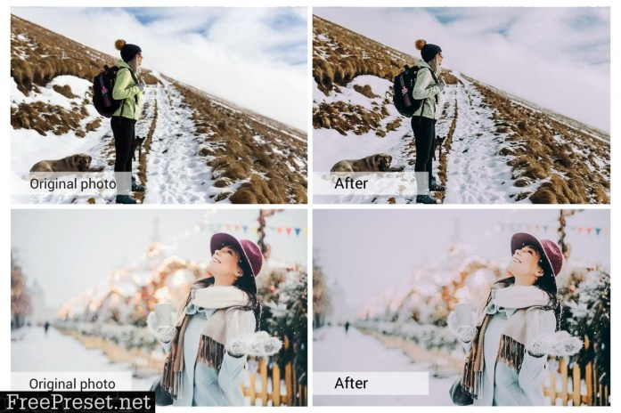 Winter Holiday Presets 5698463