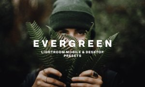 EVERGREEN LIGHTROOM PRESETS 5756318
