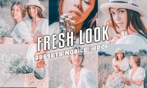 Fresh Look Insta Preset