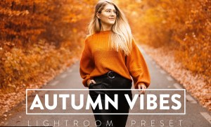 10 Autumn Vibes Lightroom Presets