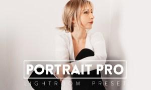 10 Portrait Pro Lightroom Presets 5937259