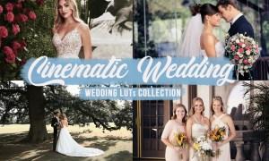 Cinematic Wedding LUTs Bundle 5845567
