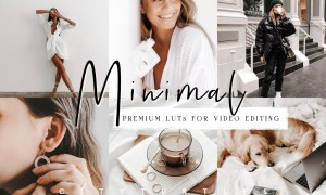 Clean Minimal LUTs for Video Editing 5917244