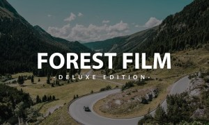 Forest Film Deluxe Edition | For Mobile and deskto