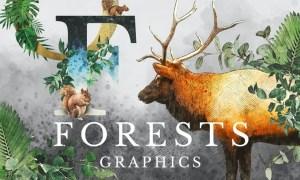 Forest Illustrations Graphics Kit MLKC8N