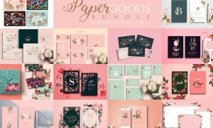 Paper Goods Bundle – Handpicked Set 2760465