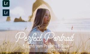 Perfect Portrait Lightroom Presets 5931457
