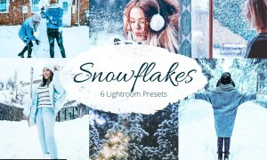 Snowflakes Lightroom Presets bundle 5881215