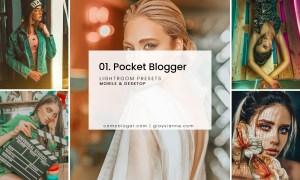 01. Pocket Blogger Presets 2785877