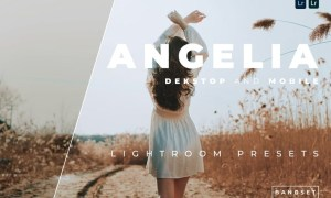 Angelia Desktop and Mobile Lightroom Preset