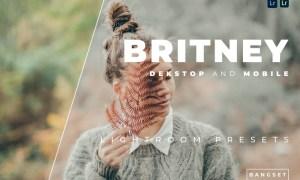 Britney Desktop and Mobile Lightroom Preset