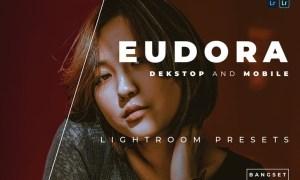 Eudora Desktop and Mobile Lightroom Preset