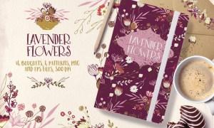 Lavender Flowers 723562