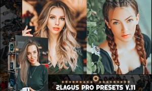 PRO Presets - V 11 - Photoshop & Lightroom