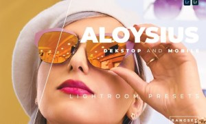 Aloysius Desktop and Mobile Lightroom Preset