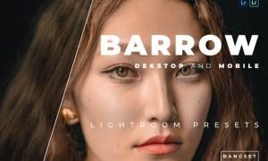 Barrow Desktop and Mobile Lightroom Preset