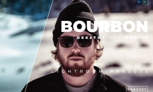 Bourbon Desktop and Mobile Lightroom Preset