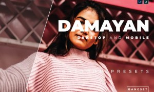 Damayan Desktop and Mobile Lightroom Preset