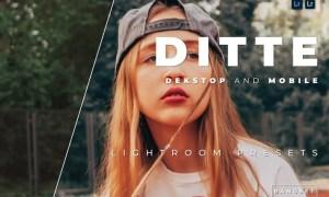Ditte Desktop and Mobile Lightroom Preset
