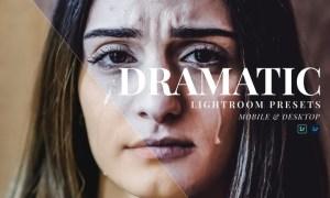 Dramatic Mobile and Desktop Lightroom Presets