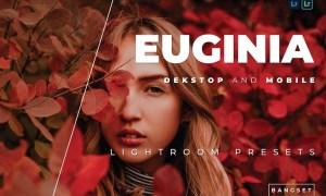 Euginia Desktop and Mobile Lightroom Preset